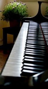 pianoforte saletta track zero